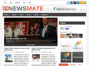 Preview NewsMate theme
