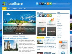 Preview TravelTours theme
