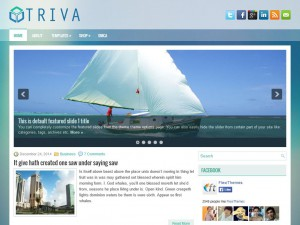 Preview Triva theme