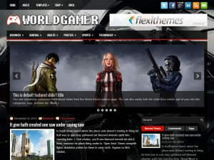 Preview WorldGamer theme